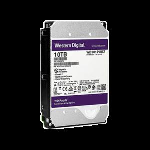 Purple 10TB